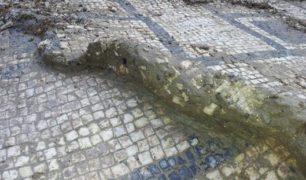 18 domus part mosaico amb B (2) (Copy)
